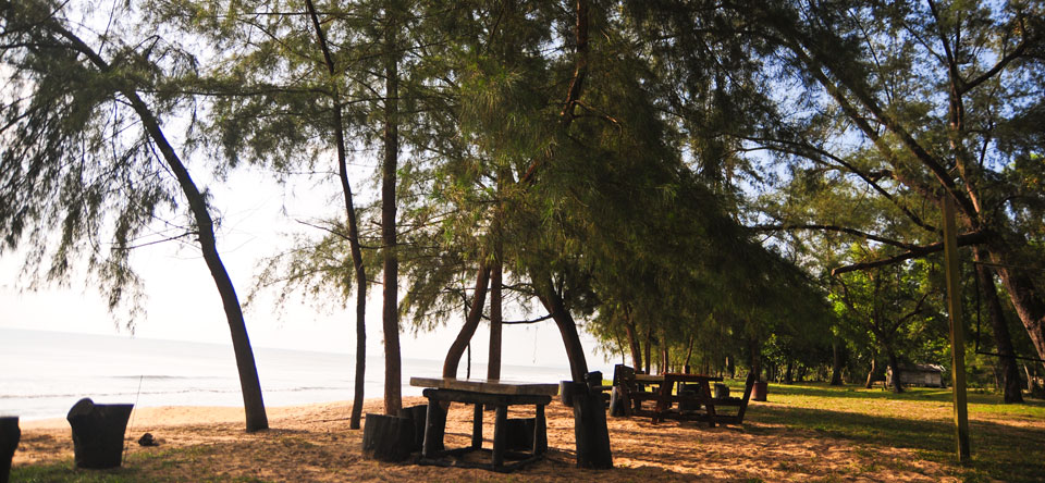 Sit by the beautiful beach of Cherating under the luscious shade of the trees. You'll not want to be anywhere else.